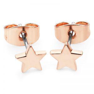 Tipperary Crystal Mini Rose Gold Star Stud Earrings